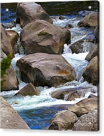 Acrylic Print featuring the photograph Living Waters by Robert Pearson