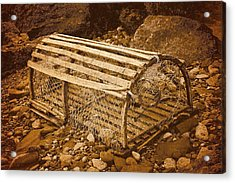 Lobster Trap Acrylic Print by WB Johnston
