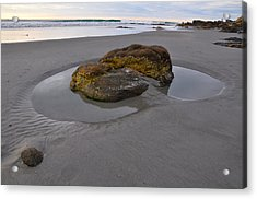 Longsands Rock Acrylic Print by Catherine Easton