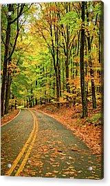 Lost In Pennsylvania - Paint Acrylic Print