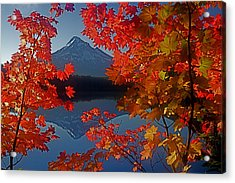 Lost Lake Autumn Acrylic Print by Todd Kreuter