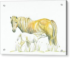 Loving Care Acrylic Print by Katrin J Oskarsdottir
