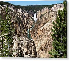 Lower Falls From Artist Point In Yellowstone National Park Acrylic Print by Louise Heusinkveld