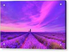 Magical Fields Acrylic Print