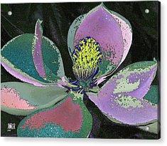 Magnolia Acrylic Print by Michele Caporaso