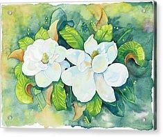 Magnolias Acrylic Print by Cathy Locke