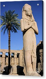 Majestic Statue Of Ramses II At Karnak Temple Acrylic Print by Sami Sarkis