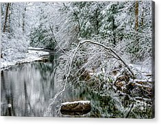 Acrylic Print featuring the photograph March Snow Cranberry River by Thomas R Fletcher