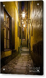 Marten Trotzig's Grand Acrylic Print by Inge Johnsson