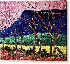 Massanutten Peak Awaiting Spring Acrylic Print