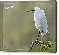 Acrylic Print featuring the photograph Matthew 5 8 by Dawn Currie