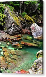 Mcdonald Creek 11 Acrylic Print by Marty Koch