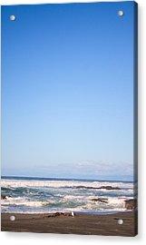 Mendocino California Coastline Acrylic Print by Tammie Gilchrist