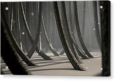 Microscopic Hair Fibers Acrylic Print by Allan Swart