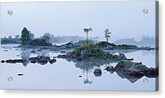 Mist And Trees Acrylic Print