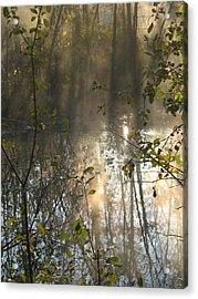 Misty Morning Acrylic Print by Ralph Baginski