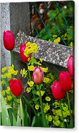 Acrylic Print featuring the photograph Monet by Nancy Bradley
