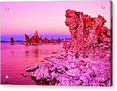 Mono Lake Dawn Acrylic Print by Dennis Cox