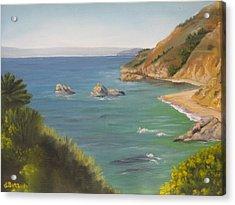 Monterey II Acrylic Print by Lisa Barr