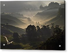 Morning At Cameron Highlands Acrylic Print