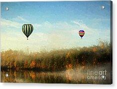 Morning Flight Acrylic Print by Darren Fisher