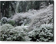 Morning Snow In The Garden Acrylic Print