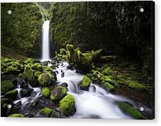 Acrylic Print featuring the photograph Mossy Grotto by Brian Bonham