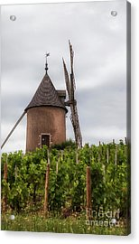 Moulin-a-vent Acrylic Print by Timothy Johnson