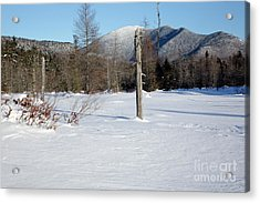 Mount Carrigain - White Mountains New Hampshire Usa Acrylic Print by Erin Paul Donovan