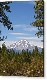 Acrylic Print featuring the photograph Mount Shasta by Daniel Hebard