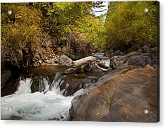 Mountain River Acrylic Print