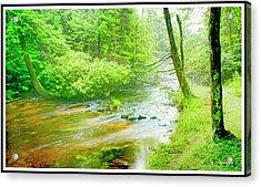 Mountain Stream, Pocono Mountains, Pennsylvania Acrylic Print by A Gurmankin