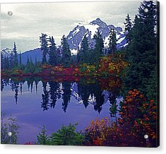 Mt. Shuksan - Picture Lake Acrylic Print