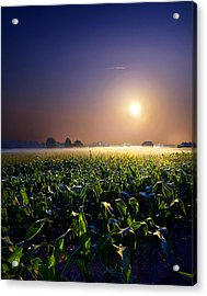 Mystic Acrylic Print by Phil Koch