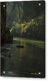 Mystical Canyon Signed Acrylic Print
