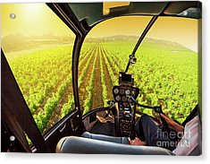 Napa Valley Scenic Flight Acrylic Print