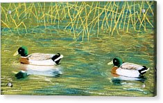 Acrylic Print featuring the pastel Near The Reeds by Jan Amiss