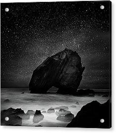 Acrylic Print featuring the photograph Night Guardian by Jorge Maia