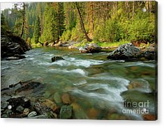 North Fork Of The St. Joe Acrylic Print