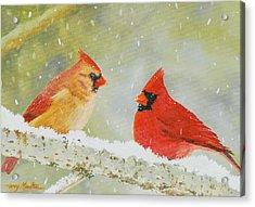 Northern Cardinals Acrylic Print