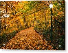 Nyc Autumn Acrylic Print by Vivienne Gucwa