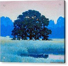 Oak Tree Acrylic Print
