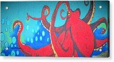 Octopus Acrylic Print by Martin Cline