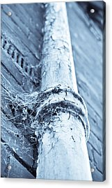 Old Drain Pipe Acrylic Print by Tom Gowanlock