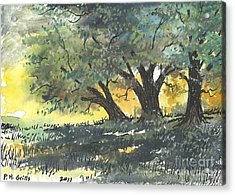 Old Oaks Acrylic Print by Patrick Grills