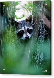 On Watch Acrylic Print