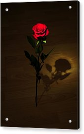 One Red Rose Acrylic Print by Svetlana Sewell
