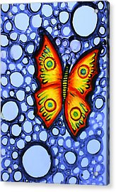 Orange Butterfly Acrylic Print by Brenda Higginson
