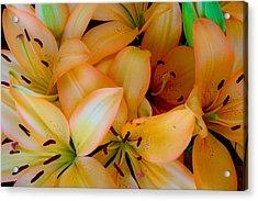 Orange Lilies Acrylic Print by Mark Barclay
