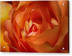 Orange Passion Acrylic Print